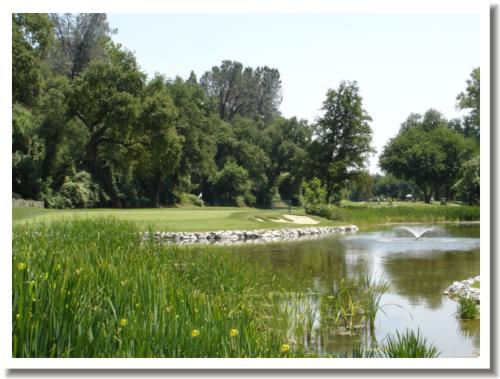 Riverview Golf and Country Club, Redding California, 17 green
