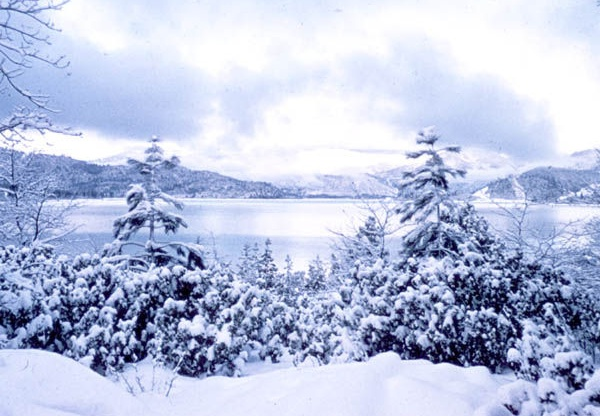 whiskeytown lake in snow