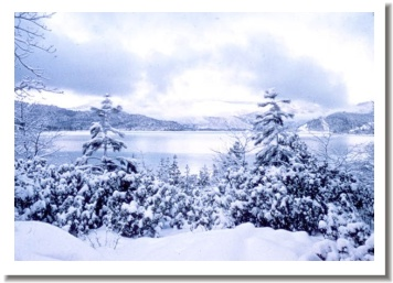 Whiskeytown Lake in Snow,  Redding California after a heavy snow