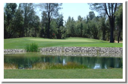 Gold Hills Golf, Redding California, #13 green