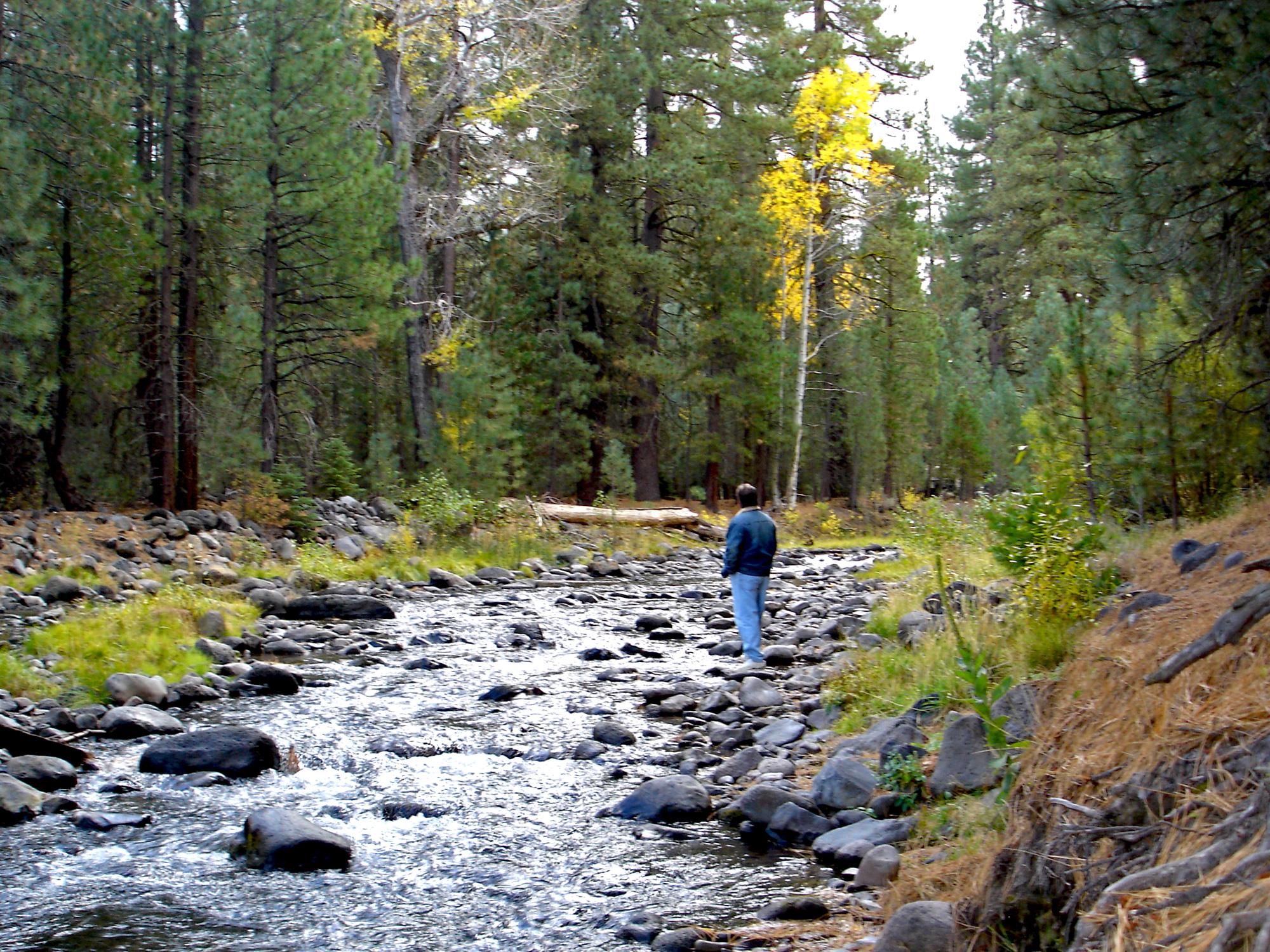 hat-creek-gazing