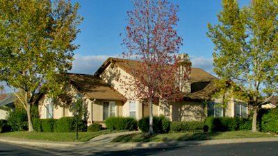 the-vineyard-home-1