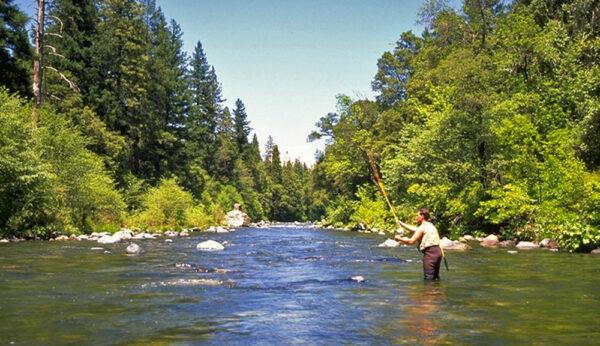 creek-fishing-11