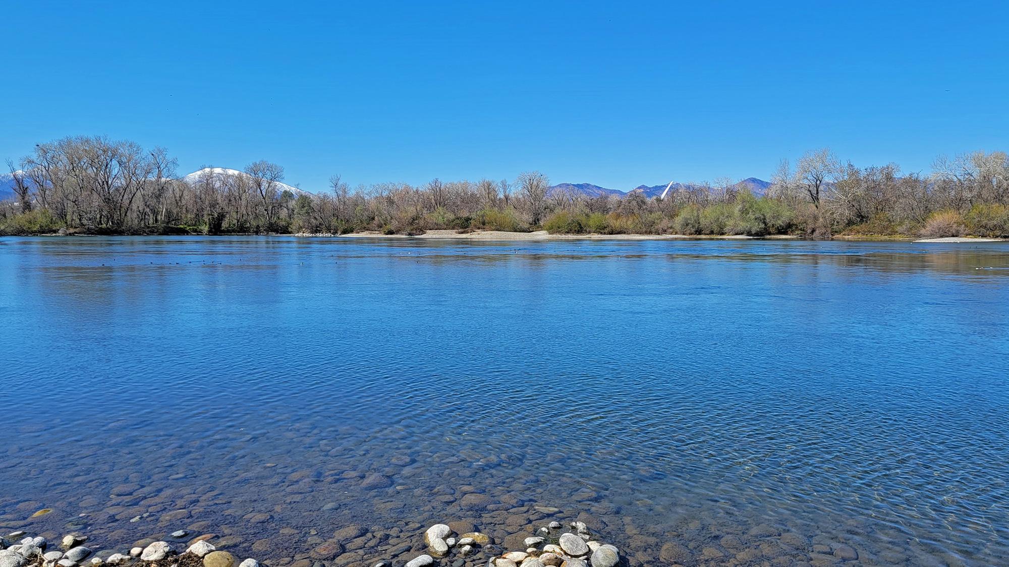 sacramento-river-77a