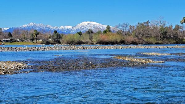 sacramento-river-park-marina
